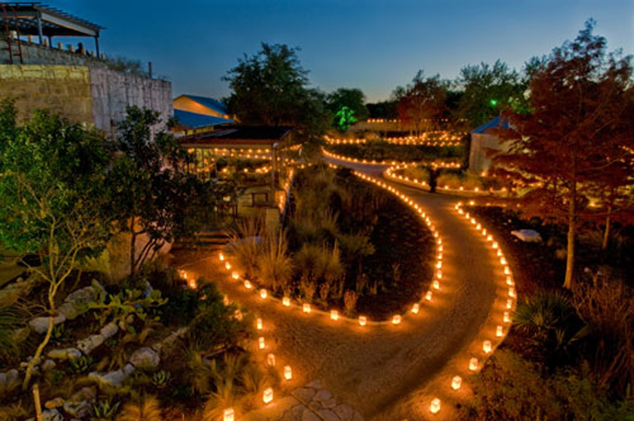 Luminations\' light up Lady Bird Johnson Wildflower Center | Donna ...